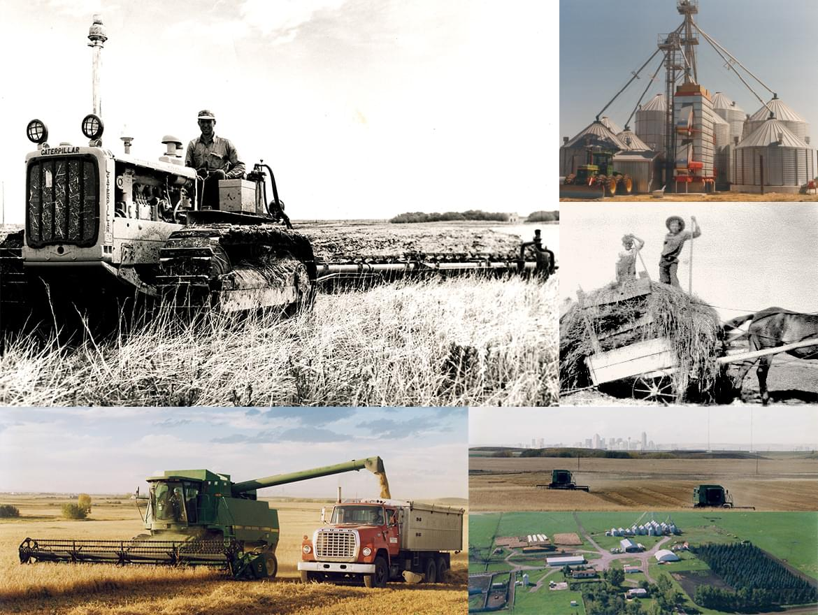 Collage: Ollerenshaw Ranch and farming
